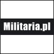 BRĄZOWY 105x105 Militaria